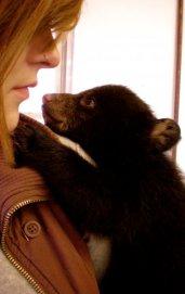 molly bear.jpg
